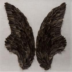 Quadro Fly Wings